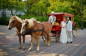 "Elegant carriage from ""Jura stables"""